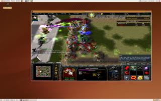 warcraft3-ubuntu-skibi2.png