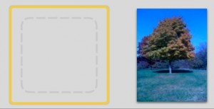 Don't be afraid! iPhoto can't preview PNG files, but you can use Preview to convert them to JPGs